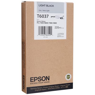 Epson T603700 Light Black UltraChrome K3 Ink Cartridge (T6037)